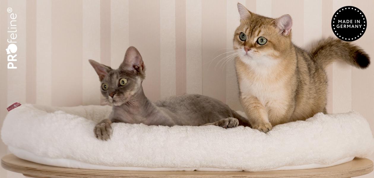 Katzenbetten & Kissen mit Klettboden für Kratzbäume