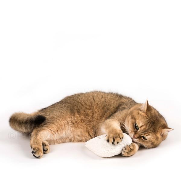 Profeline - Catnip Meow