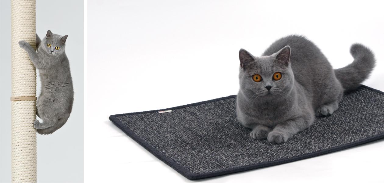 kratzst mme kletterstamm kratzmatten f r katzen. Black Bedroom Furniture Sets. Home Design Ideas