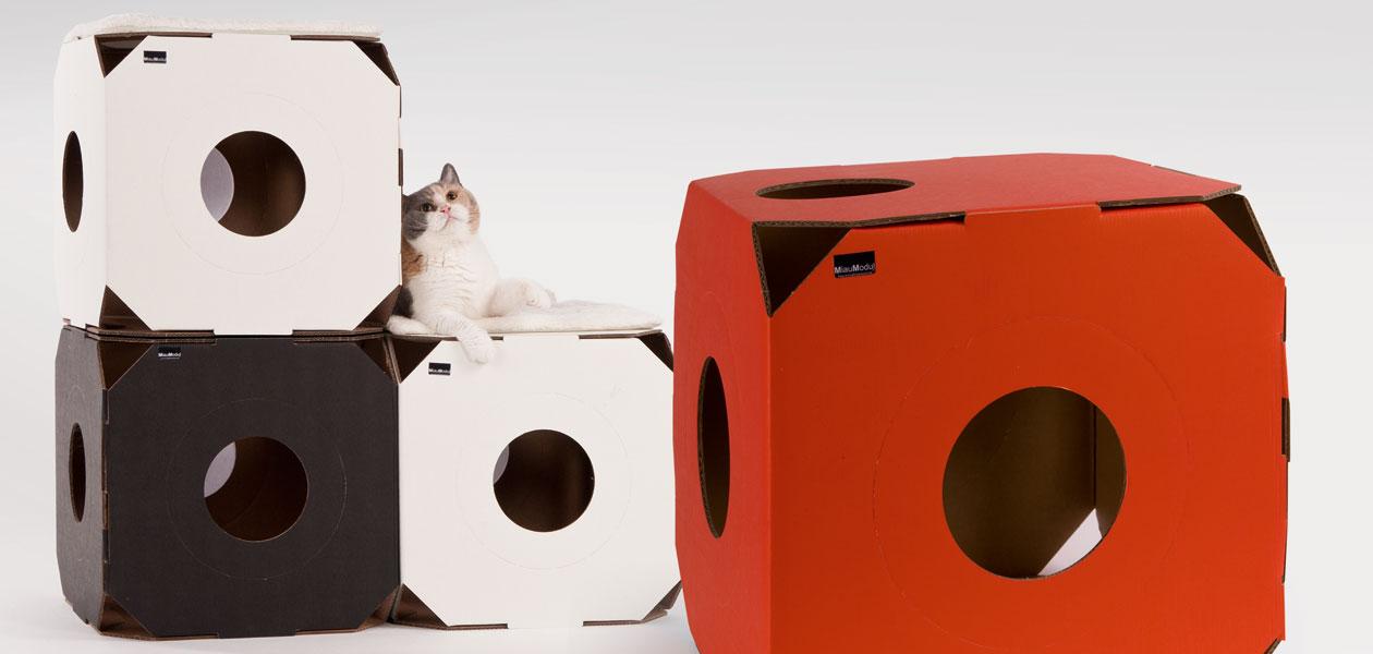 Katzenmöbel aus Pappe