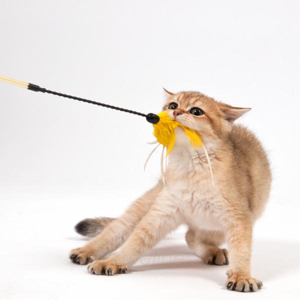 Katzenangel - Federtänzer