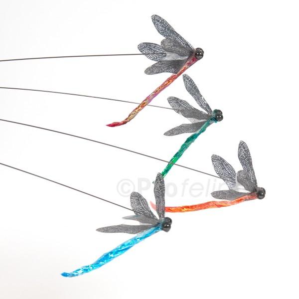 Dragonfly - Katzenangel Libelle