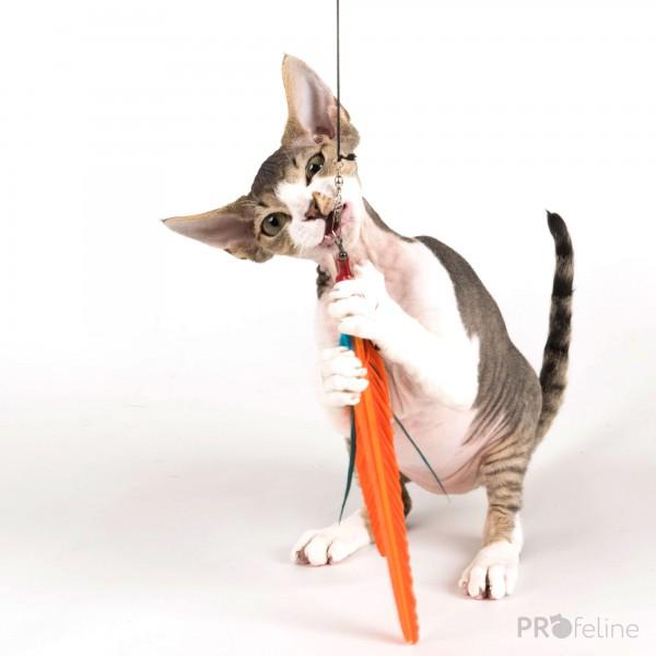 Go Cat - DaBird Turkey Ersatzfeder