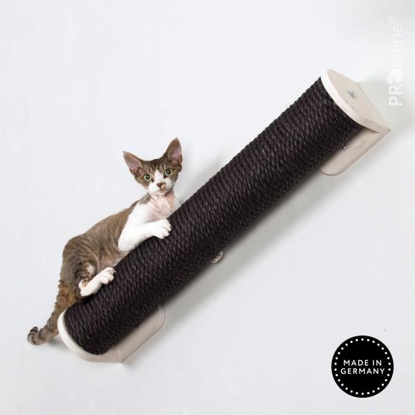 Katzensteg