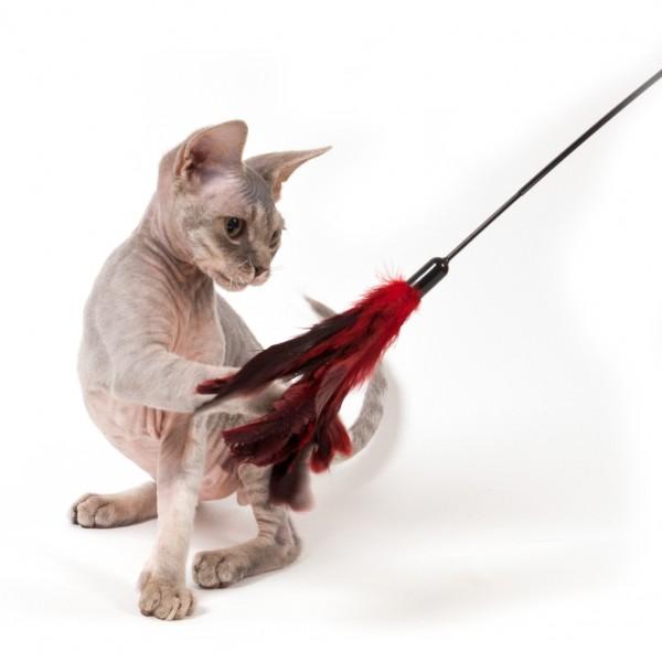Cats Claws - Katzenwedel Wiggler