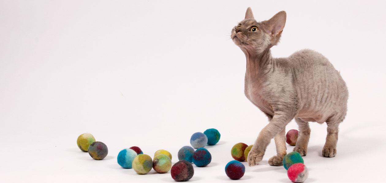 Mäuse & Bälle für die Selbstbeschäftigung