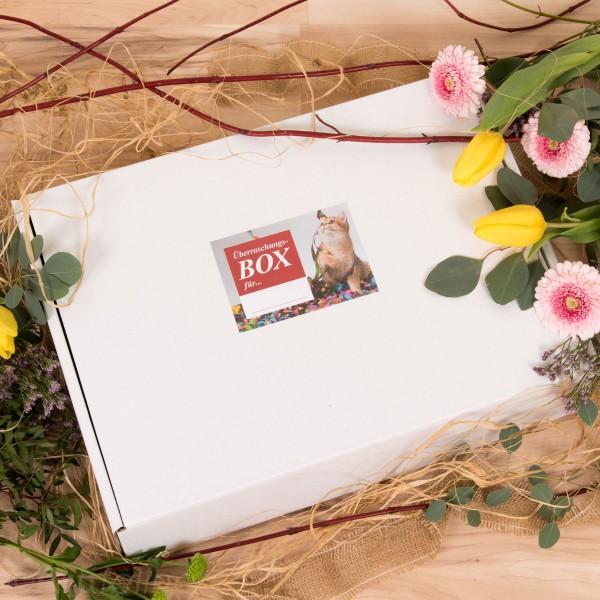 Profeline - ÜberraschungsBox
