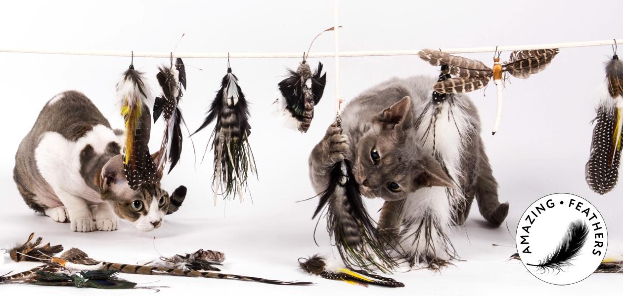 Amazing Feathers - Ersatzanhänger für Katzenangeln