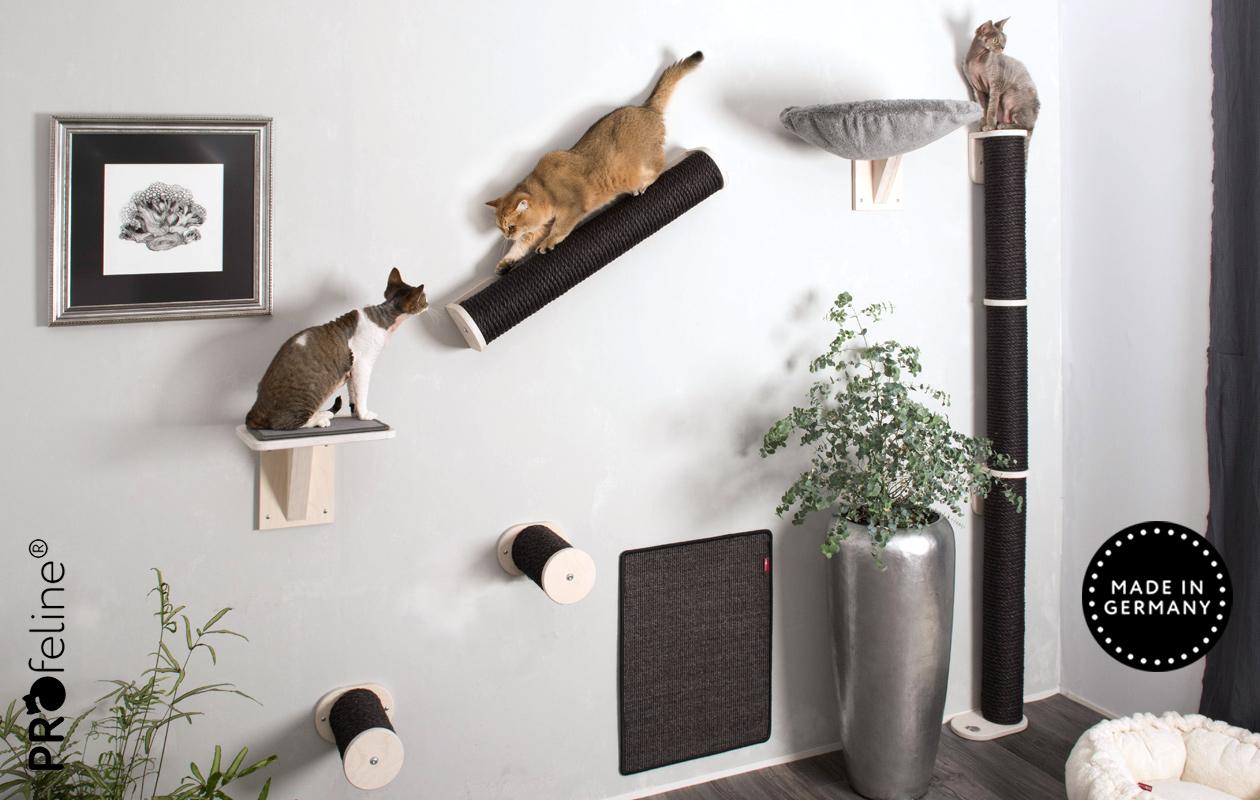 Kletterstämme, Kratzstämme und Katzenstege für die Wandmontage