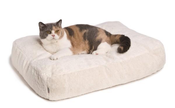 Katzenbett - Feline Futon
