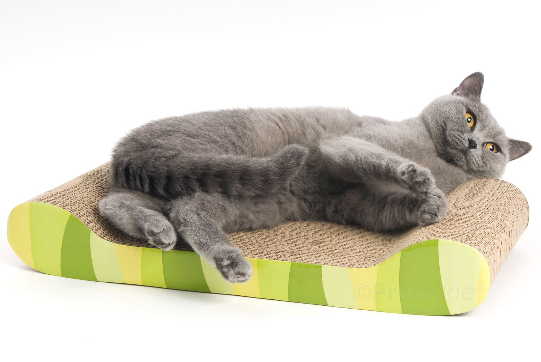 catit kratzm bel dschungelstreifen katzen pappm bel katzenspielzeug profeline katzenshop. Black Bedroom Furniture Sets. Home Design Ideas