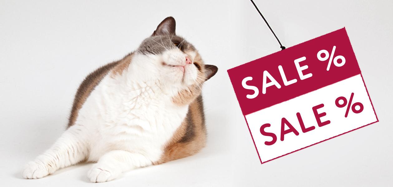 SALE - reduziertes Katzenzubehör