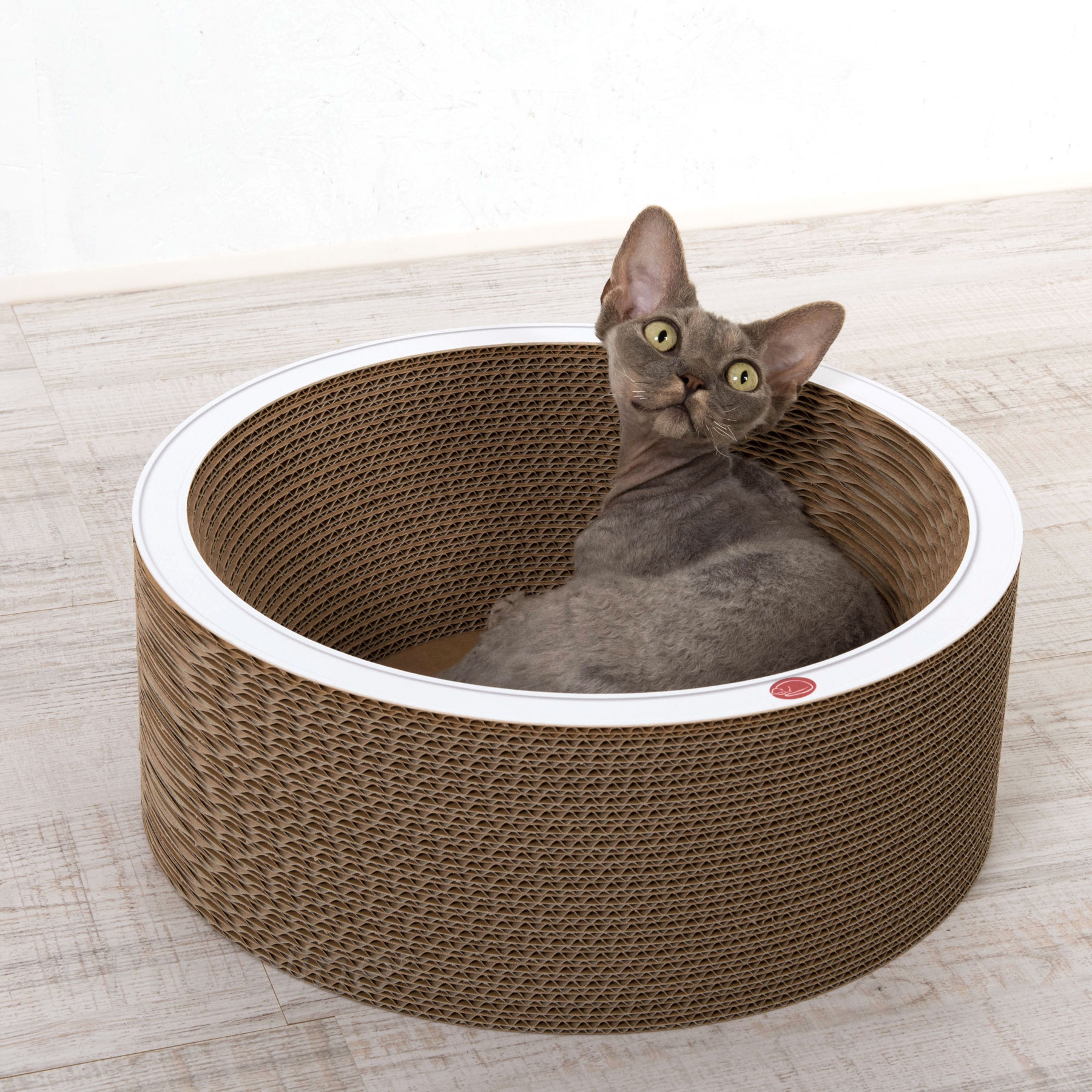katzenbett bowl aus wellpappe bietet was sich katzen w nschen profeline katzenshop. Black Bedroom Furniture Sets. Home Design Ideas